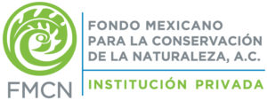 Logo-completo_2016